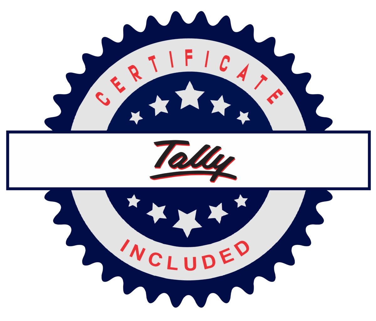 Tally| Perfect Computer Classes